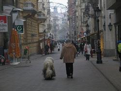 Barrios de Budapest