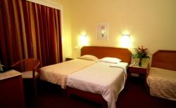 Servicios del Hotel Miraparque