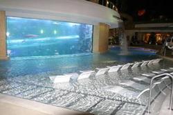 Reservar Hotel Golden Nugget Hotel & Casino