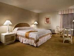 Servicios del Hotel Imperial Palace