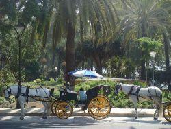 Cómo moverse por Málaga