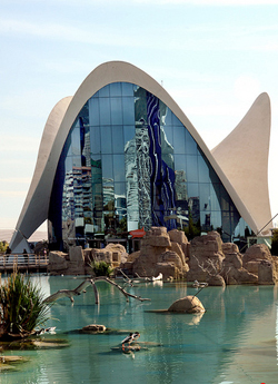 El Oceanografico de Valencia