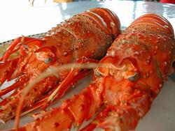 Dónde comer en Menorca