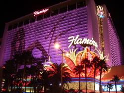 Hotel Flamingo de