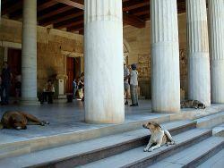 Biblioteca de Adriano de Atenas
