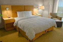 Servicios del Hotel Seminole Hard Rock Hotel & Casino