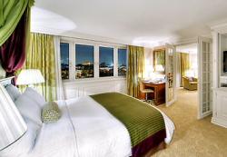 Servicios del Hotel Marriott Vienna
