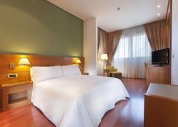 Servicios del Hotel TRYP Malaga Alameda