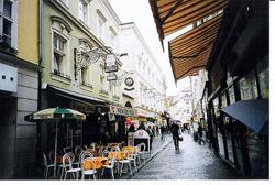 Barrios de Viena