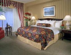 Servicios del Hotel Hilton New York