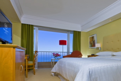 Servicios del Hotel Sheraton Rio Hotel & Resort